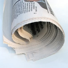 newspaper resized 600