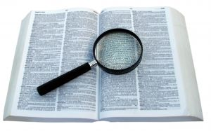 plagiarism hunters resized 600