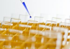scientific research plagiarism